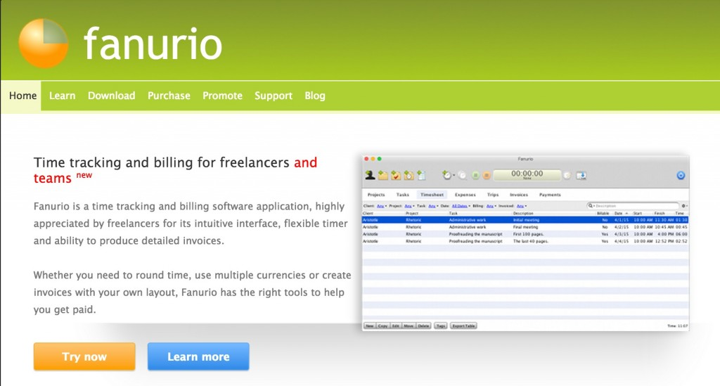Fanurio Time tracking software
